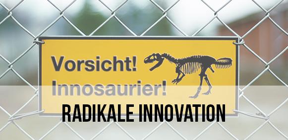 Zum Vortrag: Radikale Innovation